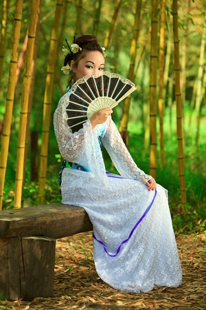 Japanese dreams Stock Photo - 13166304