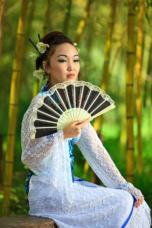 Japanese dreams Stock Photo - 13166311