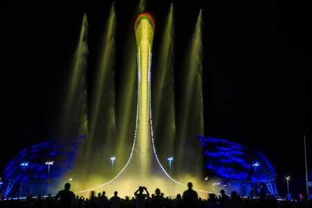 Light-musical representation of a fountain in the  park of Sochi