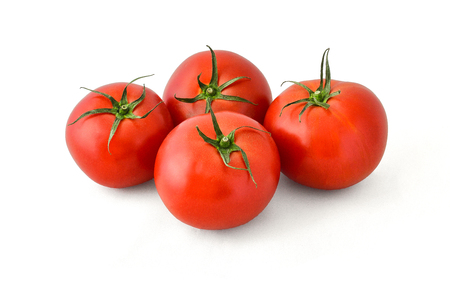 Delicious appetizing tomatoes with green branches on which they grew on a white background
