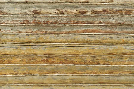 Texture wooden log cabin log wall pine logs