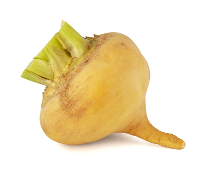 Fruit fresh turnip with a tail and green leaves on a white background