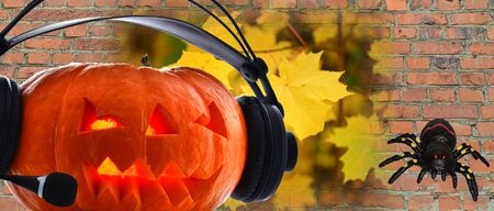 On Halloween day dressed in a pumpkin of audio headphones to listen to the radio with the spider and the October background 版權商用圖片