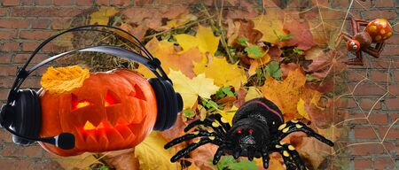 Festive music in the headphones pumpkin with spiders and cobwebs on the brick and the backdrop of autumn foliage to the day of Halloween
