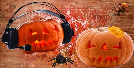 Pumpkins for the holiday of Jack Day Halloween with a leaf on the top and headphones on top with spiders with cobwebs on the background of autumn crimson rowan bushes 版權商用圖片