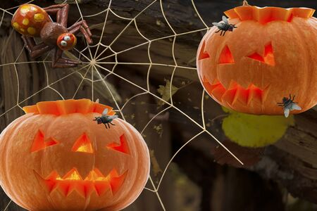 A pair of pumpkins with glowing eyes and a toothy mouth with a spider with a trap a spider web and two flies in it against a rotten stump