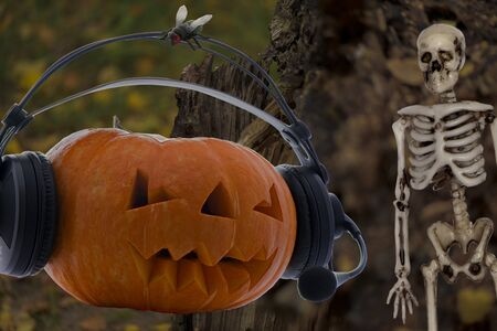 Pumpkin on the radio for the Halloween holiday in orange attire with a scary skeleton and a fly on the background of a rotten stump