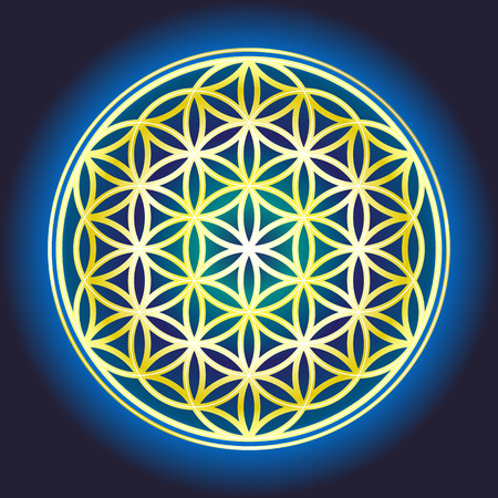 sacral: The flower Of Life Illustration