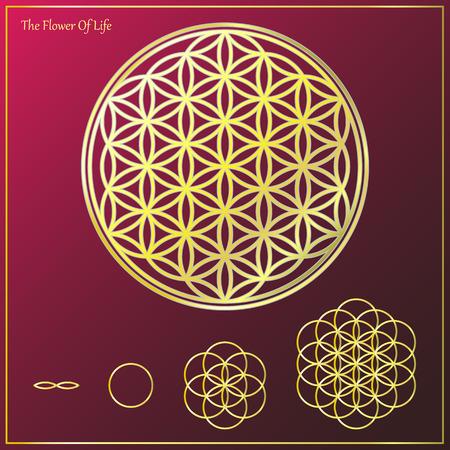 silhouette fleur: La fleur de la vie