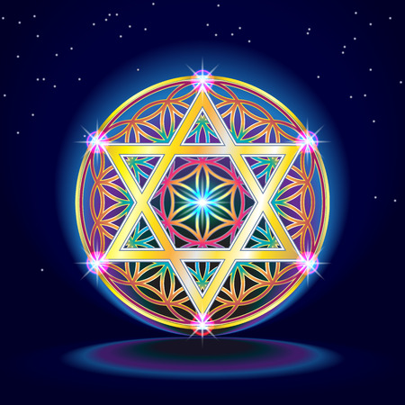 The flower Of Life Vettoriali