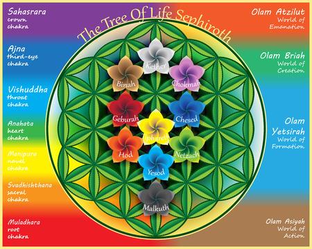 Der Baum des Lebens Vektorgrafik