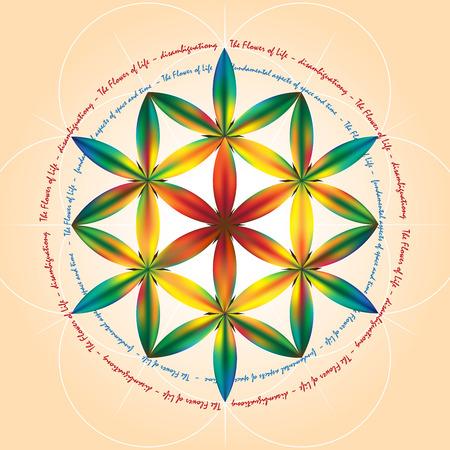 Symbole der Heiligen Geometrie, zeigen grundlegende Aspekte von Raum und time.Flower Lebenssymbol Variationen. Standard-Bild - 38393689