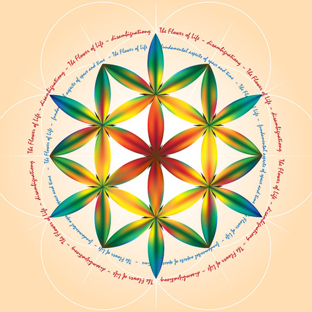 flower age: Symbols of sacred geometry, depict fundamental aspects of space and time.Flower of life symbol variations. Illustration