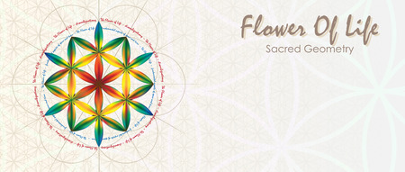 Symbols of sacred geometry, depict fundamental aspects of space and time. Flower of life symbol variations in letter format.