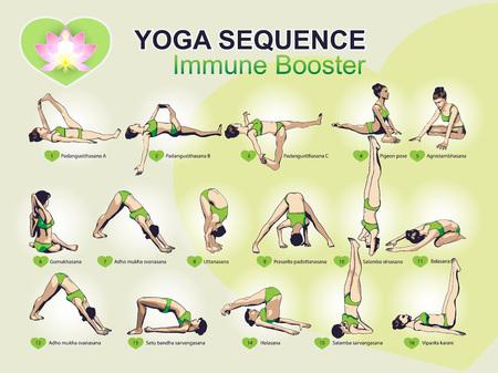 inmunidad: Un conjunto de complejos ejercicios secuencia visual de yoga para un mejor estimulante inmunológico Vectores