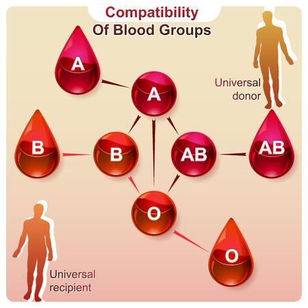 Eine visuelle Darstellung der Kompatibilität der Blutgruppen in Infografiken Standard-Bild - 47014329