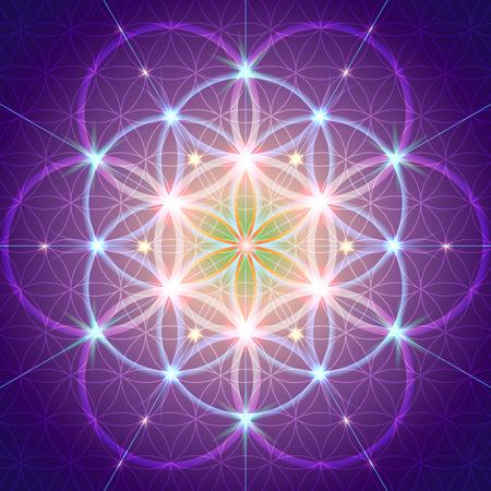 神聖な幾何学の記号には、スペースおよび時間の基本的な側面が描かれています。フラワー ・ オブ ・ ライフ シンボルのバリエーション。