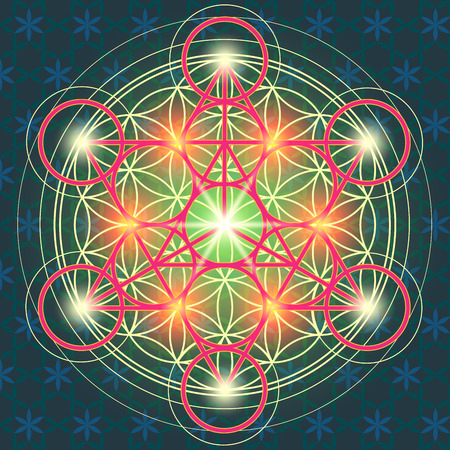 Vector illustration of the sacred geometry of the FLOWER OF LIFE.Geometric figures forming a symbol of spiritual representations with colorful decorative elements 向量圖像