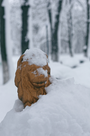 Park sculpture in winter. Photo of the figure of a bronze lion covered with snow 版權商用圖片 - 94232794