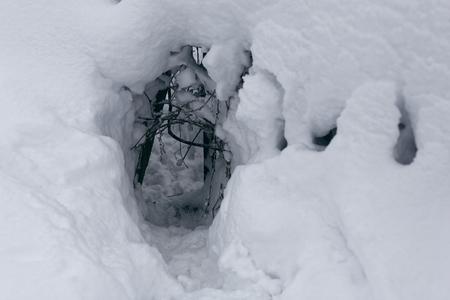 Winterfoto eines Baues oder eines Durchgangs irgendeines Tieres oder Tieres mit einem ausgetretenen Weg in den Schneeverwehungen Standard-Bild - 94252800