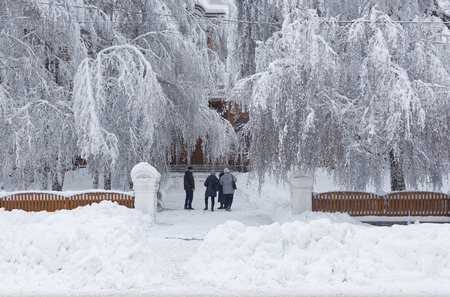 Photo of the Winter cityscape with a street, big trees in the snow with walking people