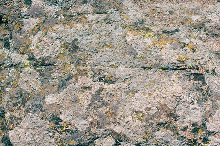 Photograph of granite stone texture. Old large granite stone covered with multi-colored moss. 版權商用圖片 - 128875876