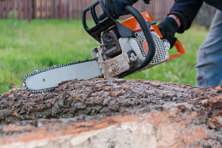 To saw a tree gasoline saw. The man saws a tree. The forester with a saw.gasoline saw Stock Photo