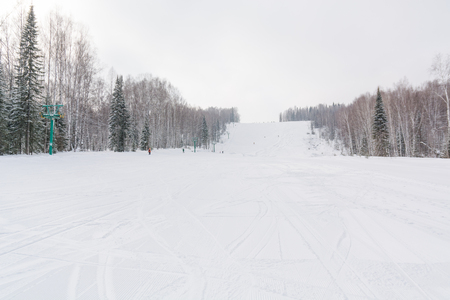 The ski slope. Ski slope in the forest. Beautiful winter forest in the taiga. Trees under the snow. Track for skiers. The ski track.