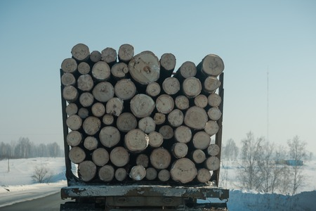 Logs on a big car. Lots of firewood close up. Felled forest. Steal the trees. The car carries firewood along the winter road.