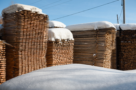Timber lies under the snow. Sawn timber layzima. A sawn tree in the snow. Stok Fotoğraf