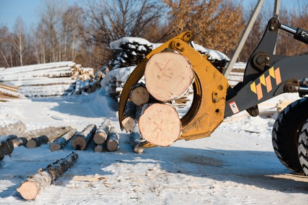 Shipping logs on a special machine. Harvest forest in winter. A sawn forest in the snow. Work on the sawmill.