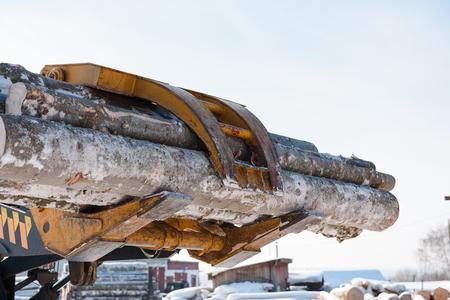 Tractor loads logs. Logs taken away. The manipulator loads the logs. Trees sawed. Logs in the truck