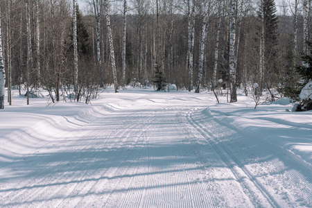 Ski trail in the forest. Traces of the snowcat. Trail for skiing in the forest. Winter forest for an athlete. Running track in the winter in the forest. Stok Fotoğraf