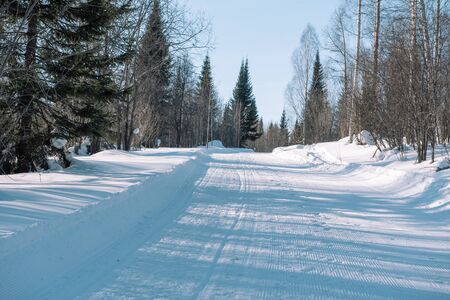 Ski trail in the forest. Traasa in the winter forest. The road for walking through the winter forest. Taiga in the winter. Tracks from the snowcat. Footprints in the snow. Stock Photo