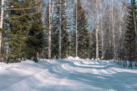 Footprints in the snow from the car. The road to the forest. Winter landscape. Winter in Siberia. Winter road. Trees in the snow. Stok Fotoğraf