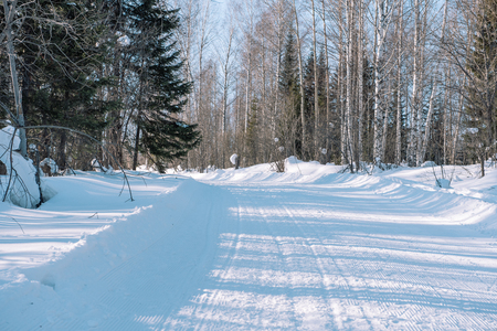 Ski trail in the forest. Traasa in the winter forest. The road for walking through the winter forest. Taiga in the winter. Tracks from the snowcat. Footprints in the snow.