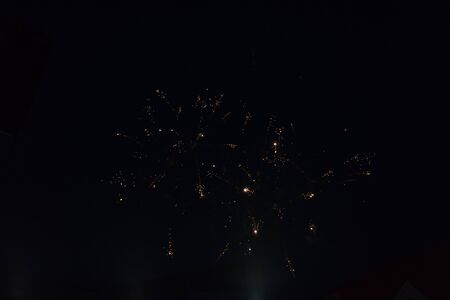 fireworks in the sky. fireworks on the black sky. closeup salute