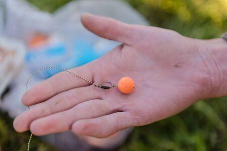 bait for carp. Wear hooks for carp. bait for carp. Boyle fishing