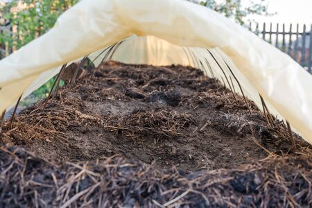 Manure bed. Organic fertilizers. Grow vegetables. Natural fertilizers. Countryside. Grow vegetables in the garden. Grow in the ground.