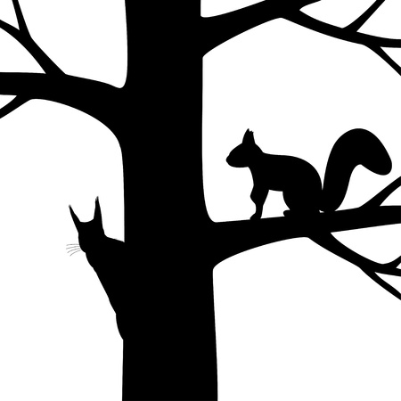 illustration the silhouette two squirrel on the tree. Vector