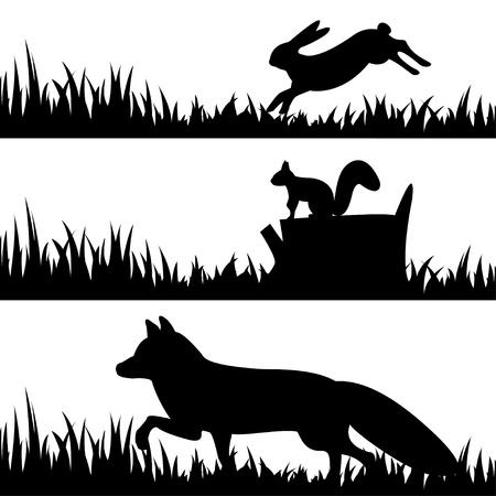 liebre: Conjunto de vectores de siluetas de animales en la hierba