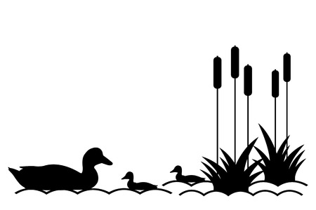 Vector illustration of ducklings in the lake  向量圖像