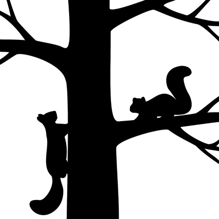 bare: Vector illustration the silhouette two squirrel on the tree. Illustration