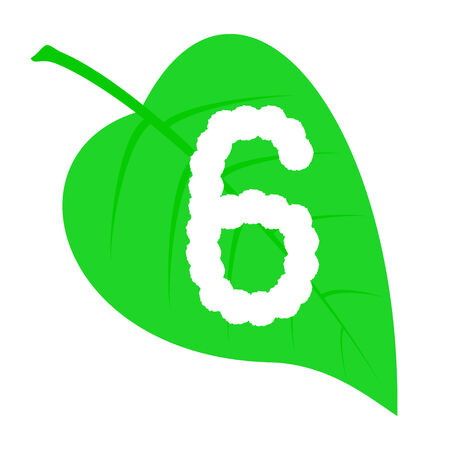 Figure six on a green leaf. Vector