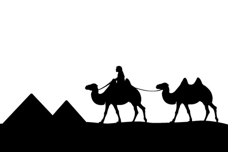nomad: The man on the camel of the pyramids.