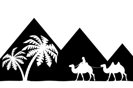 The man on the camel the pyramids. Vector