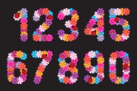five petals:  illustration numbers of flowers. Illustration