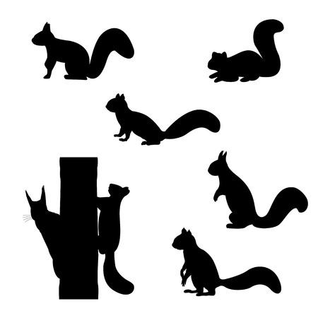Set van silhouetten van eekhoorns.