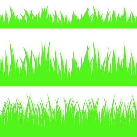 sward: Set of seamless the grass.