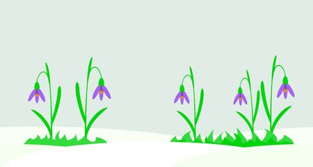 snowdrops: Seamless illustration with snowdrops.
